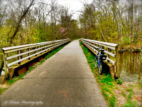Thornapple Trail Seasons