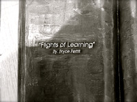 Flight of Learning